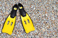 Yellow fins and sand beach Royalty Free Stock Photo