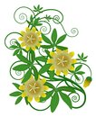 Yellow flower and green leaves Royalty Free Stock Photography