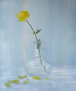 Yellow flower in a jar on a blue background textured conceptual image Stock Images