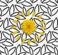 Yellow flower and petals on the black white flower background.Flat lay Royalty Free Stock Photo