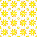 Yellow Flower Seamless Pattern Stock Image