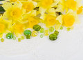 Yellow flowers and colorful stones Royalty Free Stock Photos