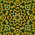 Yellow flowers kaleidoscope Royalty Free Stock Photo