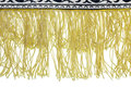 Yellow fringe Royalty Free Stock Photo