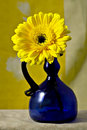 Yellow Gerber Gerbera Daisy in cobalt blue vase Royalty Free Stock Photo