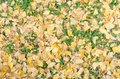 Yellow ginkgo leave and green weed on ground Royalty Free Stock Photo