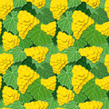 Yellow grapes and leaves seamless background pattern of green vector illustration eps Stock Photos