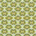 Yellow green black and orange flower petals on a white background illustration