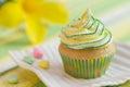 Yellow green motive cupcake with alamanda flower on background Royalty Free Stock Photo