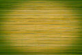 Yellow green webbed texture Royalty Free Stock Image