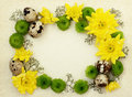 Yellow, green and white flowers with quail eggs on old paper Royalty Free Stock Photo