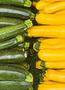 Zucchini Yellow and Green Royalty Free Stock Photo