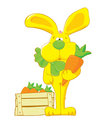 Yellow_hare_with_carrot Fotos de archivo libres de regalías