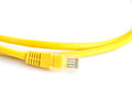 Yellow lan cable closeup on white background Royalty Free Stock Photo