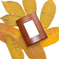 Yellow leaves and brown frame Stock Photo