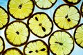 Yellow lemon on a blue background. Texture of sliced lemon. Silh Royalty Free Stock Photo