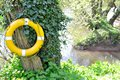 Yellow lifebuoy ring by the river Royalty Free Stock Photos