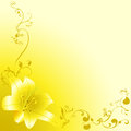 Yellow lili yellow background Royalty Free Stock Photography