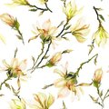 Yellow magnolia flowers on a twig on white background. Seamless pattern. Watercolor painting. Hand drawn. Royalty Free Stock Photo