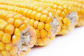 Yellow maize Stock Images