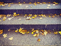 Yellow maple leaves on a  staircase steps on autumn Royalty Free Stock Photo