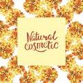 Yellow marigold chrysanthemum petunia calendula rose flower background frame in watercolor drawing. Natural cosmetic hand writing. Royalty Free Stock Photo