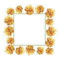 Yellow marigold chrysanthemum petunia calendula rose flower frame in watercolor drawing. Royalty Free Stock Photo
