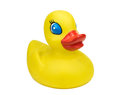 Yellow Mother Duck Royalty Free Stock Photo