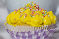 Yellow muffin cream details Royalty Free Stock Images