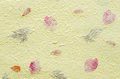 Yellow mulberry paper with petal and leaf texture background. Royalty Free Stock Photo