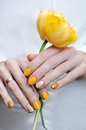 Yellow nail design. Female hand holding yellow tulip Royalty Free Stock Photo