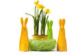 Yellow narcissus in the pot and three bunnies Royalty Free Stock Images