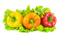 Yellow, orange and red peppers on salad leaves Royalty Free Stock Photo