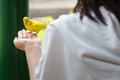 Yellow parrot Royalty Free Stock Photo