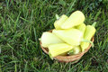 Yellow pepper in a wooden basket on a grass Royalty Free Stock Photo