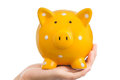 Yellow piggy bank held hand Royalty Free Stock Photography