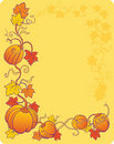 Yellow pumpkin background Stock Photo