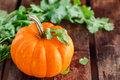 Yellow pumpkin vegetable with green leaves Stock Image