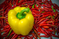 Yellow and red chili fresh is vegetable on background Stock Photo