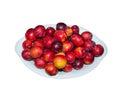 Yellow red ripe plum Royalty Free Stock Photo