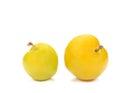 Yellow Ripe plum on white background. Royalty Free Stock Photo