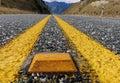 Yellow road marker.