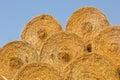 Yellow rolls of straw Royalty Free Stock Photo