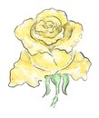 Yellow rose decorative drawn by hand on graphic tablet monochrome hatching and colorful transparent strokes eps vector Stock Photography