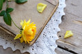 Yellow rose laying upon vintage book on lace doily decoration with Royalty Free Stock Image