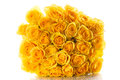 Yellow roses isolated on white background beautiful bouquet of Royalty Free Stock Image