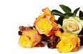 Yellow roses on white background a tray isolated Royalty Free Stock Images