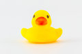 Yellow rubber duck isolated on the white background Royalty Free Stock Photos