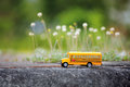 Yellow school bus toy model on country road. Royalty Free Stock Photo