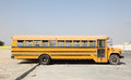 Yellow school buse Stock Images